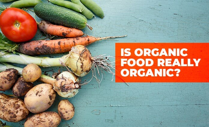 https://www.clubinfonline.com/2020/04/04/what-is-organic-food-and-is-our-food-100-organic/